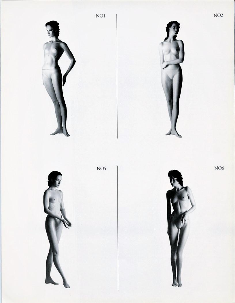Patina V Noblesse oblige, Katalog 13b